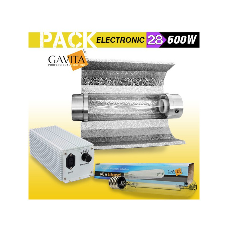 KIT ECLAIRAGE ELECTRONIC 600w GAVITA 28