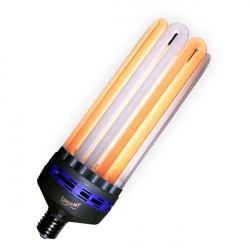 Superplant - Ampoule CFL 250W Dual/Mixte 2100K°+6400K° V2 , lampe croissance et floraison dual spectrum , E40