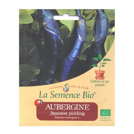 Graines bio - Aubergine Japanese pickling 20gn graines biologique
