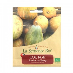 Graines bio - Courge sucrine du berry