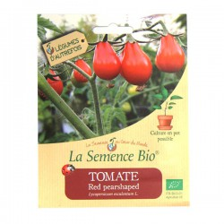 La Semence Bio - Tomate Red Pearshaped