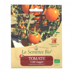 Graines bio - Tomate Gold Nugget 20g graines biologique