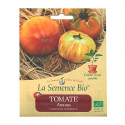 La Semence Bio - Tomate Ananas