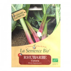 La Semence Bio - Rhubarbe Victoria