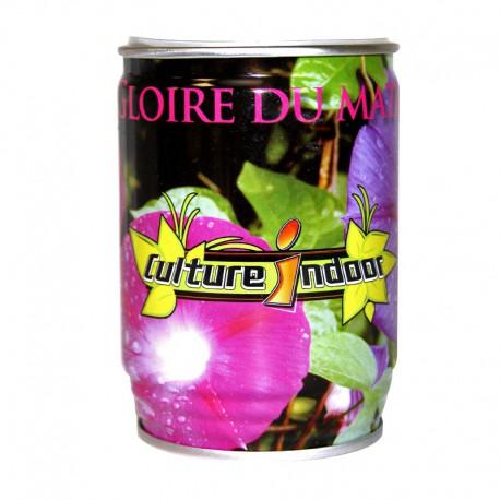 CANETTE CADEAU CULTURE INDOOR (GRAINE)
