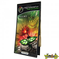 DYNAMITE SEEDS 1G , mycorhizes germination des graines , Platinium Nutrients -