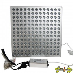 INDOORLED PANEL GROW LIGHT 45W 276X276X14MM