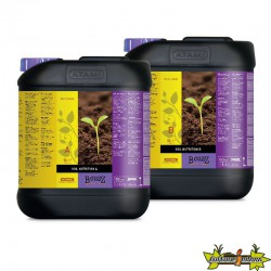 BCUZZ SOIL NUTRITION A+B 5L FR
