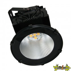 INDOORLED KINGSTAR 750 / 375 W