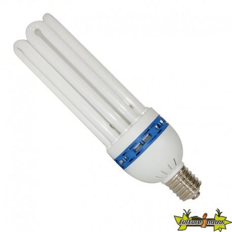 Ampoule CFL 125W Croissance 6400K° , lampe économique , douille E40