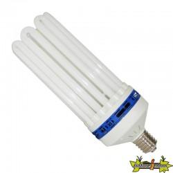 AMPOULE CFL 200W CROISSANCE 6400K° , lampe economique pour la croissance , E40