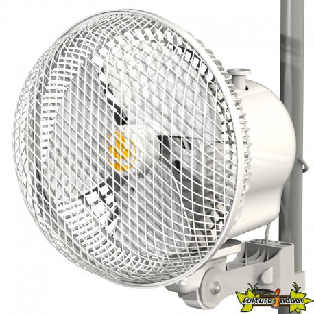 MONKEY FAN SECRET JARDIN OSCILLANT 20W 25CM UE
