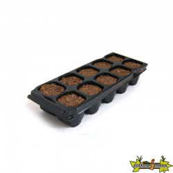 PLATINIUM - X-PLUG x10 cubes Germination-Bouturage