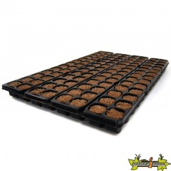 PLATINIUM - X-PLUG x104 cubes Germination-Bouturage