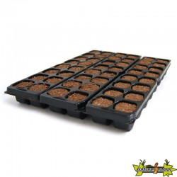 PLATINIUM - X-PLUG x48 cubes Germination-Bouturage