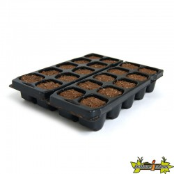 PLATINIUM - X-PLUG x20 cubes Germination-Bouturage
