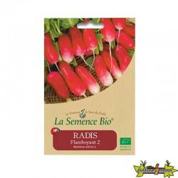 La Semence Bio - Radis flamboyant