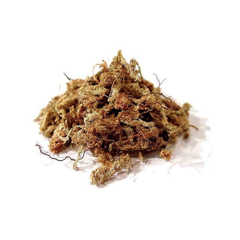 Sphaigne du Chili 5kg , substrat hydro rétenteur d'eau , idéal pour les cultures