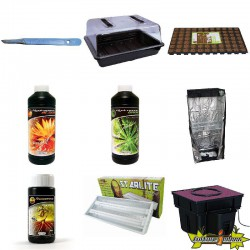 PACK chambre de culture PLANTES MERES - BOUTURES ECO 2
