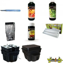 PACK chambre de culture PLANTES MERES - BOUTURES ECO 4