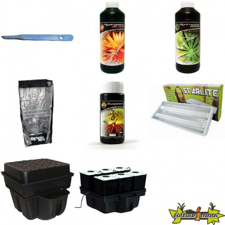 PACK chambre de culture PLANTES MERES - BOUTURES ECO 5