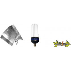 KIT lampe CFL 200W CROISSANCE 1