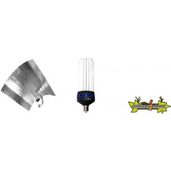 KIT lampe CFL 250W CROISSANCE 1