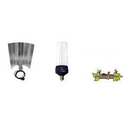 KIT lampe CFL 250W CROISSANCE 2