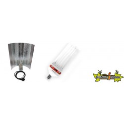 KIT lampe CFL 250W MIXTE 2
