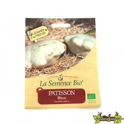 GRAINES BIO - PATISSONS BLANC (10GN)