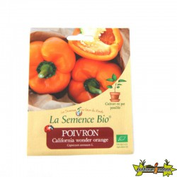 La Semence Bio - Poivron california wonder orange