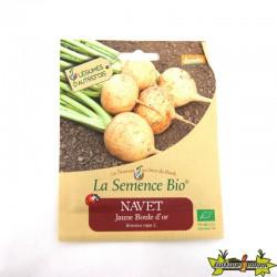 GRAINES BIO - NAVET JAUNE BOULE D'OR (300GN)