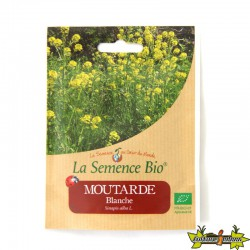 GRAINES BIO - MOUTARDE BLANCHE (25G)