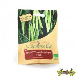 La Semence Bio - Haricot vert plat grimpant vitalis
