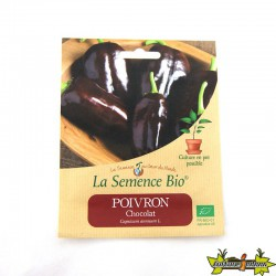 GRAINES BIO - POIVRON CORNO DI TORO CHOCOLAT (20GN) graines biologique