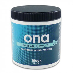 Destructeur d'odeur ONA Polar Crystal Block 170 g