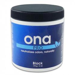 Destructeur d'odeur ONA PRO Block 170 g