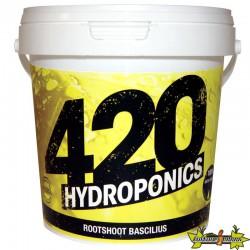 420 Hydroponics - RootShoot Bascilius 200g , bactéries bénéfiques, activateur de racines bio