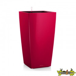 CUBICO COLOR 30 CERISE