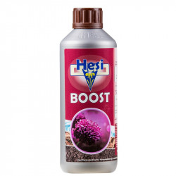 HESI BOOST 500ML