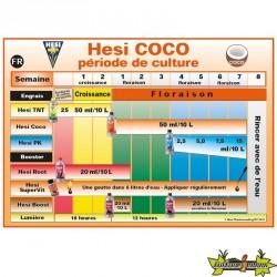 Tableau de culture Hesi Coco