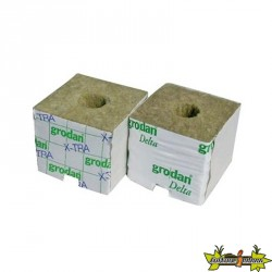 GRODAN CARTON DE 384 CUBES LDR 75X75X65 TROUS 25/35 MM
