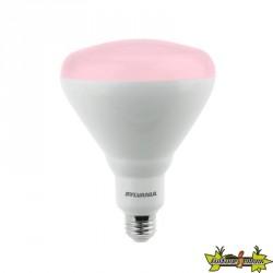 SYLVANIA GROLUX LED FLORAISON E27 17W