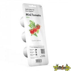 RECHARGE MINI TOMATE CLICK & GROW