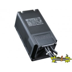 Ballast magnétique câblé BOX ETI CLASS 2 - 250W - IP20