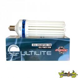 Ampoule CFL 250W 6400K, E40 pour la croissance 8u