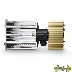 Dimlux - Kit complet Expert series 315W avec Ballast 315W Xtreme, Ampoule CMH 315W Full Spectrum et Réflecteur Alpha Optics 98