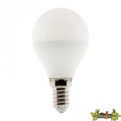 454725 AMPOULE LED SPHERIQUE 5W E14 6500K 460 LM