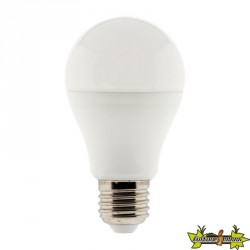 455029 AMPOULE LED DIMMABLE STANDARD 10W E27 810 LM