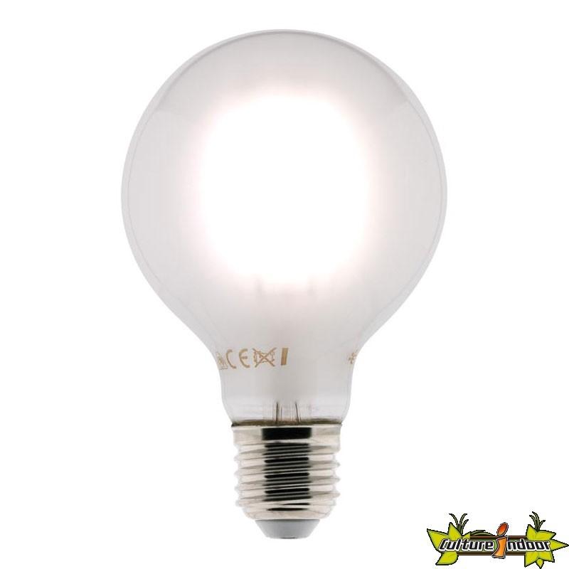 Dépoli 80mm Ampoule Elexity 806 Globe Filament Lumens Led 6w E27 rtshdxBoQC